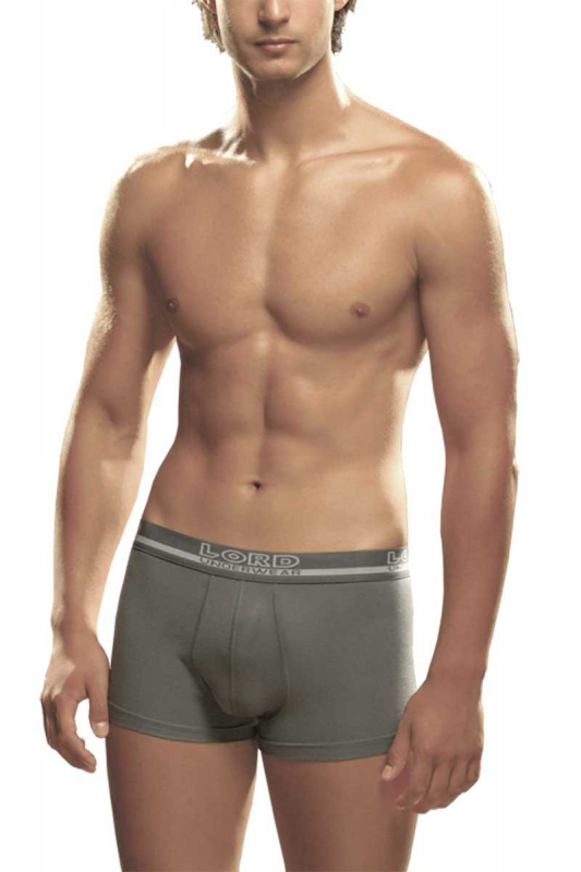 Men's Boxer brief Lord 361